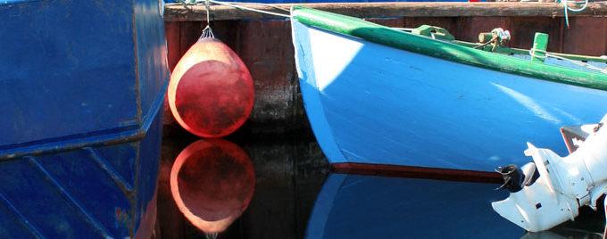 Spørgsmål Og Svar, Q & A – Om Danske Havbrug