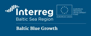 ibsr_p2_Baltic-Blue-Growth_project-logo_inverted